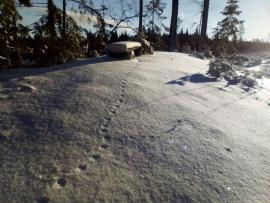 Vinterskrud i Småland 28 km från Västervik